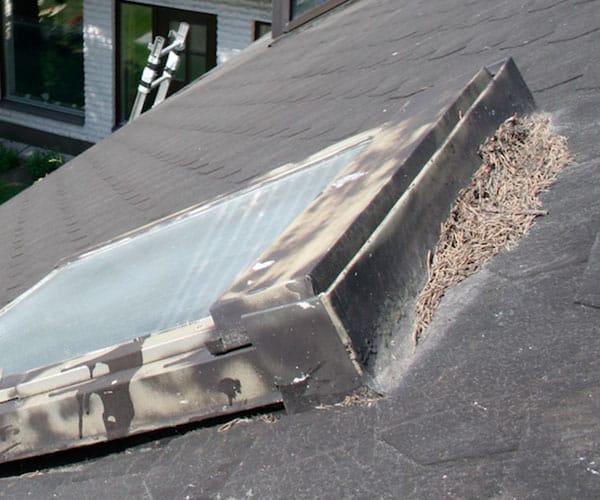 Kattoikkunan-kattovalokuvun poisto